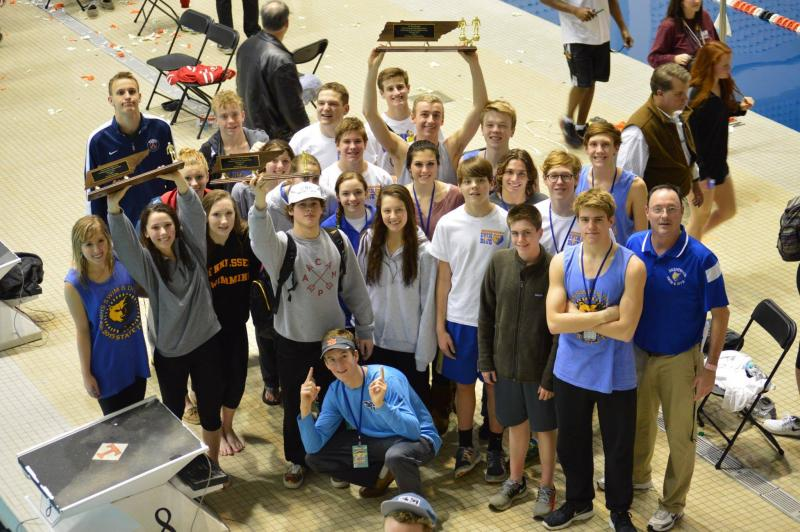 Area teams compete at swimming and diving state championships