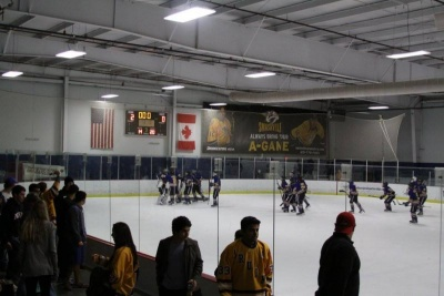 Brentwood hockey shuts out Ravenwood, advances to championship
