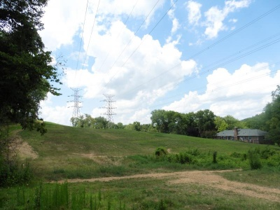 TVA beginning tree clearing in Williamson County | Tennessee Valley Authority