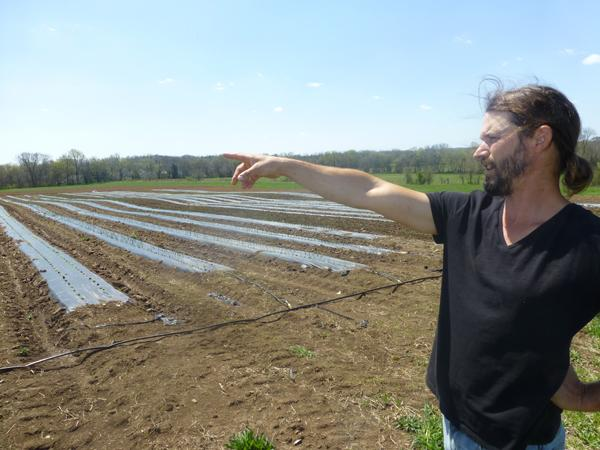 Allenbrooke Farms looks to train next generation of farmers | Allenbrooke Farms,Daniel Allen,Stephanie Allen,Community Supported Agriculture,CSA,World Wide Opportunity in Organic Farming,WWOOF,Franklin Home Page,FHP