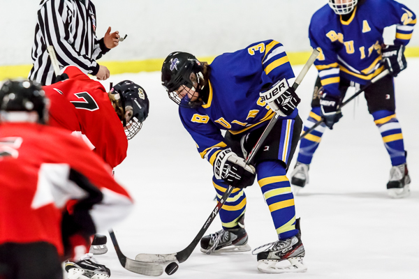 Local hockey, volleyball at risk with potential sale of A-Game