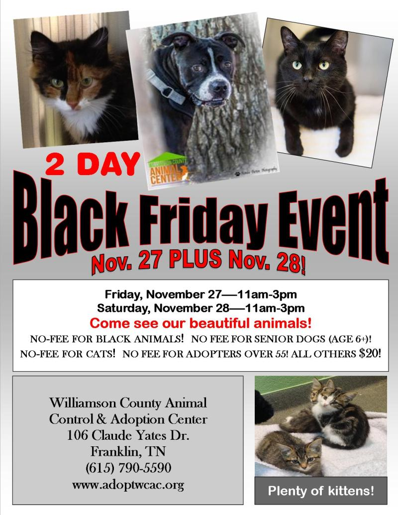 Shelter waiving adoption fees for black animals on Black Friday